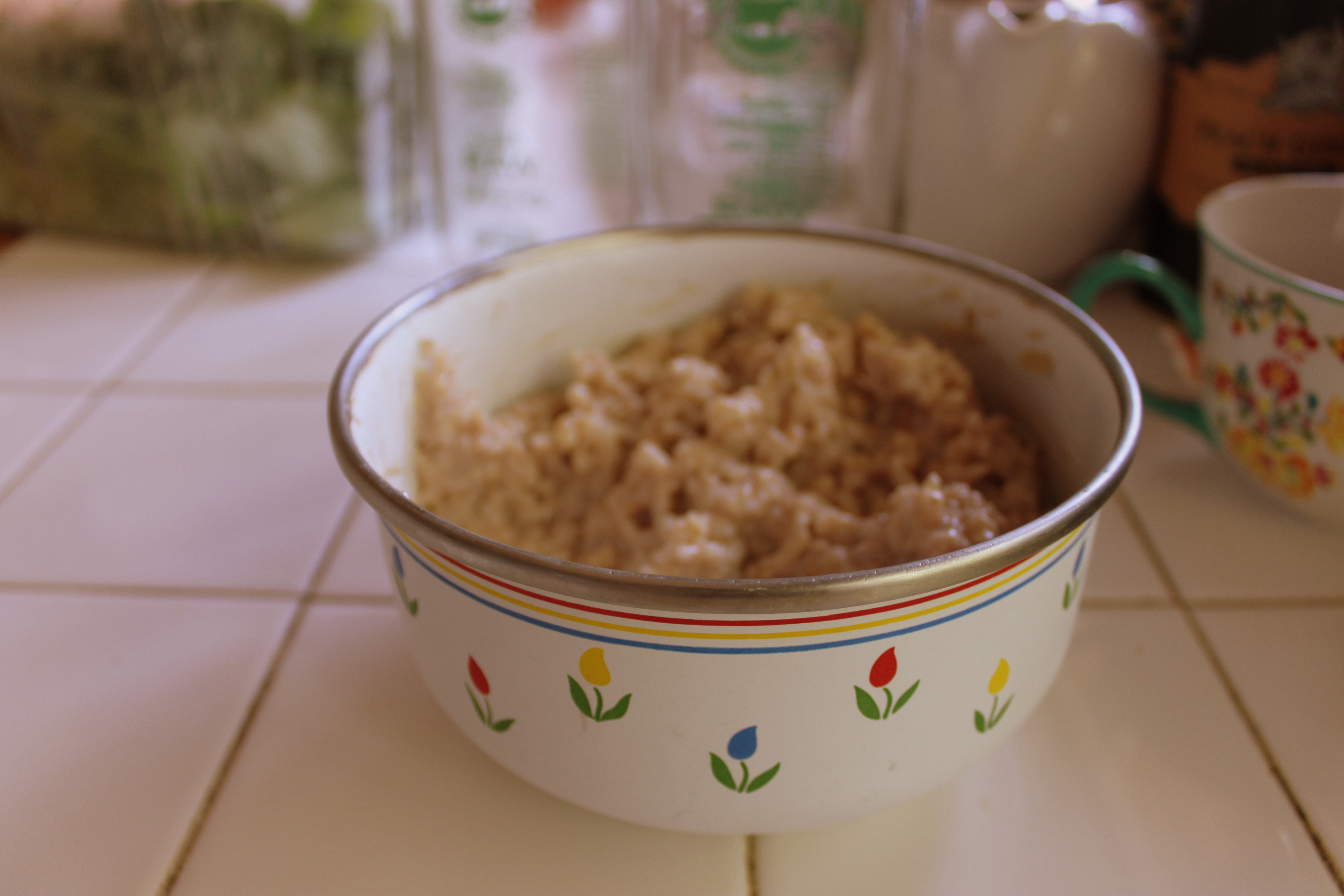 coconut rice pudding with cinnamon | girl farm kitchen